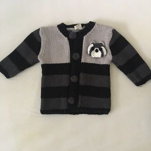 Other - Raccoon Sweater